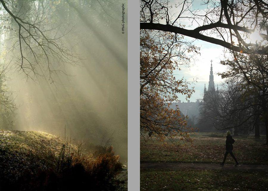 Photographe lille brumes et brouillards