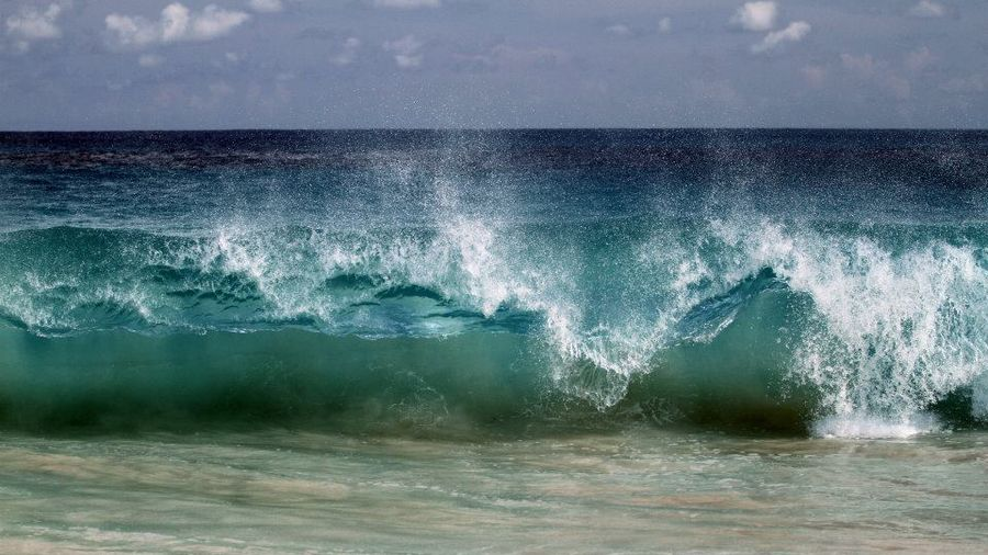Photographe lille vague aux caraibes